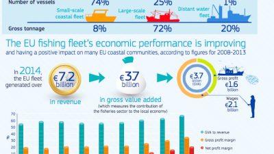 Positive economic trends in EU fishing fleet