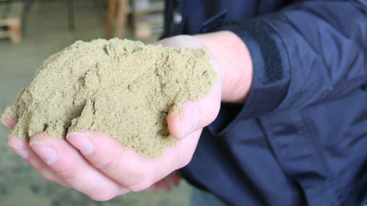 Read more about the article January fishmeal and fish oil production up