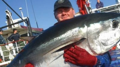 Southern Bluefin Association certified by Friend of the Sea