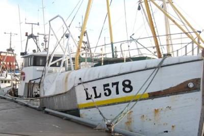LL 90578 –  Spero – ©FiskerForum - Foto: FrKo