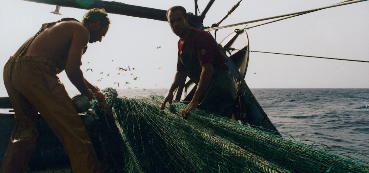 Steps towards a new Mediterranean and Black Sea fishing governance and protection