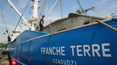 ICCAT: mixed results for French fishermen
