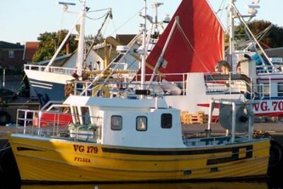 VG 179 –  FYLGIA – ©FiskerForum - Foto: G.Vejen