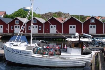 GG 221 –  Svanefjord – ©FiskerForum - Foto: G.Vejen