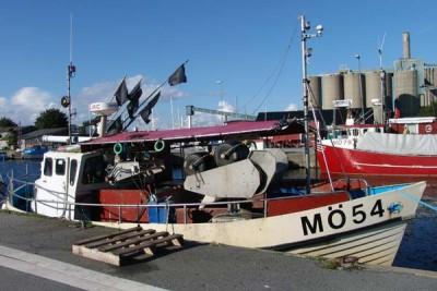 MO 54 –  Sinda – ©FiskerForum - Foto: G.Vejen