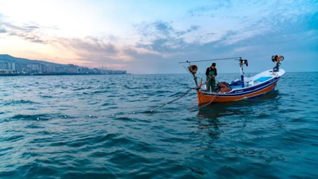 Read more about the article Black Sea nations team up to ensure sustainability
