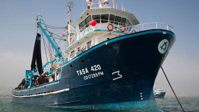 TASA joins GSSI