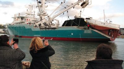 Dutch bid for French tuna operator
