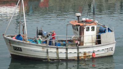 UK fisheries inquiry launched