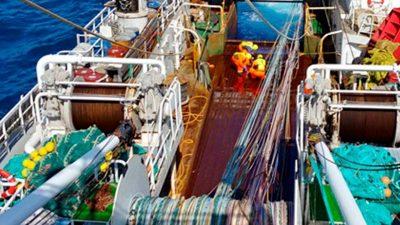 Rødfisk-flåden anvender Gloria Pelagic Trawl fra Hampidjan