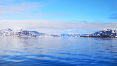 Study analyses microplastics concentration off Nuuk