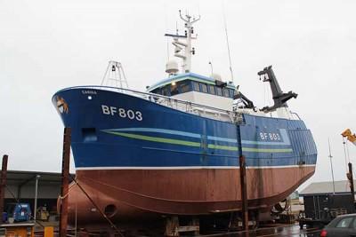 BF 803 –  Carina – ©FiskerForum - Foto: H.Hansen