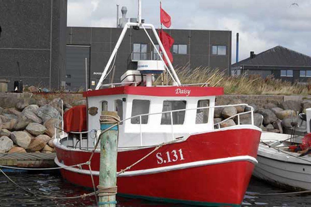 S 131 – DAISY – ©FiskerForum - Foto: H.Hansen