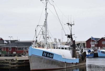 H 440 –  Bodø – ©FiskerForum - Foto: H.Hansen