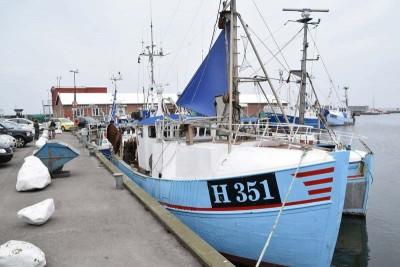 H 351 –  Zandra – ©FiskerForum - Foto: H.Hansen