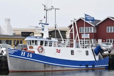 H 14 –  FRU HANSEN – ©FiskerForum - Foto: H.Hansen