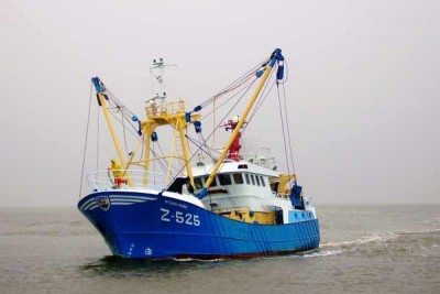 Z 525 –  Sylvia-Mary – ©FiskerForum - Foto: H.Perdok