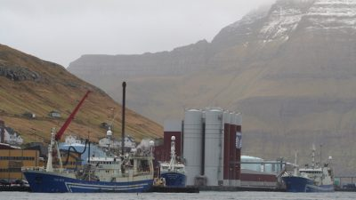 Iceland and the Faroes agree access