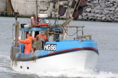 HG 90066 –  BICO – ©FiskerForum - Foto: HHjerm