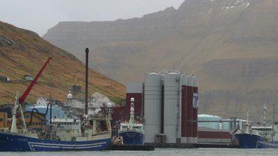 Agreement struck for better monitoring of pelagic fish stocks