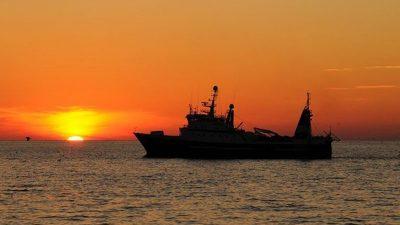 Vard contract for Nergård Havfiske's new trawler