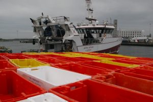 Both Dutch-flagged and UK-flagged fishing vessels will be affected by a No Deal Brexit - @ Fiskerforum