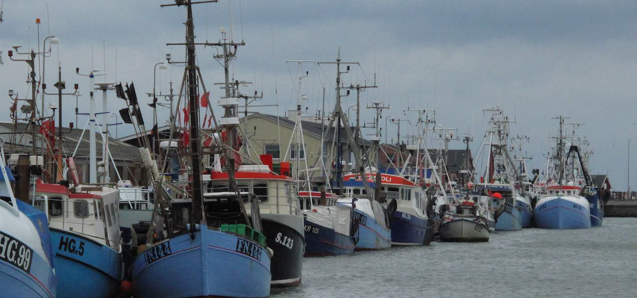 EU enables Member States to support fisheries sector