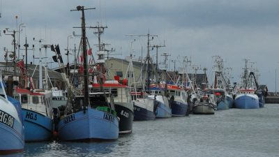 Disappointment for Danish fishermen over quota terms