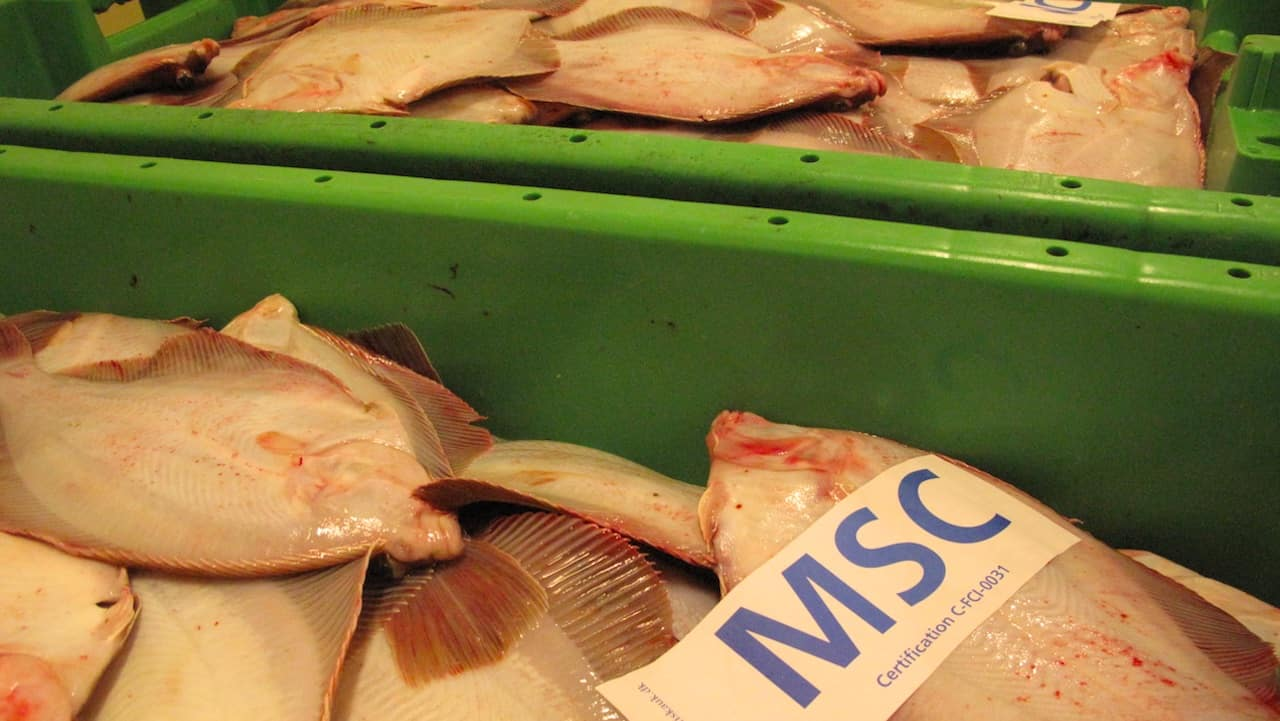 Fish firmly on the Danish menu
