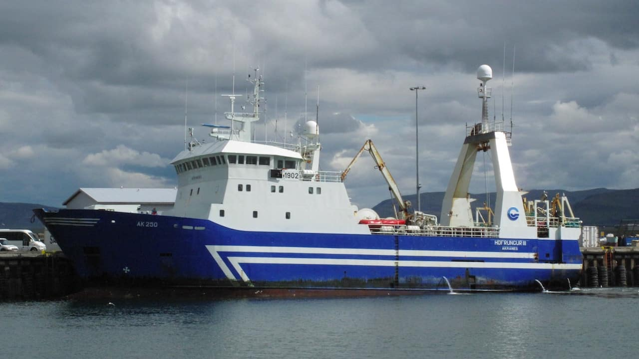 Haddock everywhere – and quota short