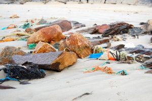 Plastic waste is widespread in the Barents Sea according to Russian and Norwegian researchers. Image: IMR - @ Fiskerforum