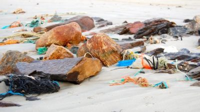 Widespread Barents Sea plastic waste