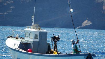 St Helena's Blue Belt tuna tagging programme