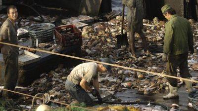Unions lodge complaint with ILO