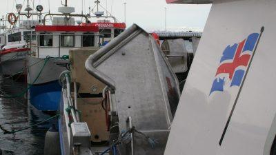 Iceland's regional quotas allocated