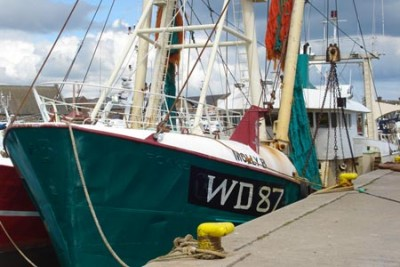WD 87 –   – ©FiskerForum - Foto: IrishWhite
