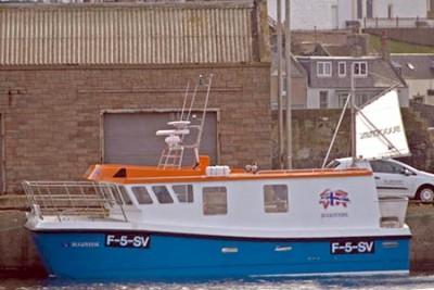 F 5SV –  Bugøyfisk – ©FiskerForum - Foto: JimmyT