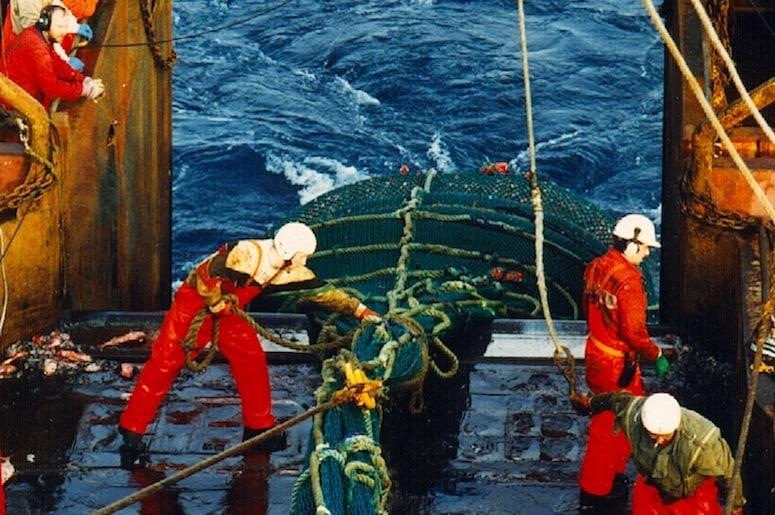 Iceland's seamen's unions aim to merge