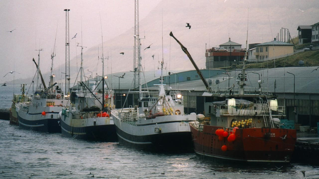 Read more about the article MSC approves Faroese cod and haddock