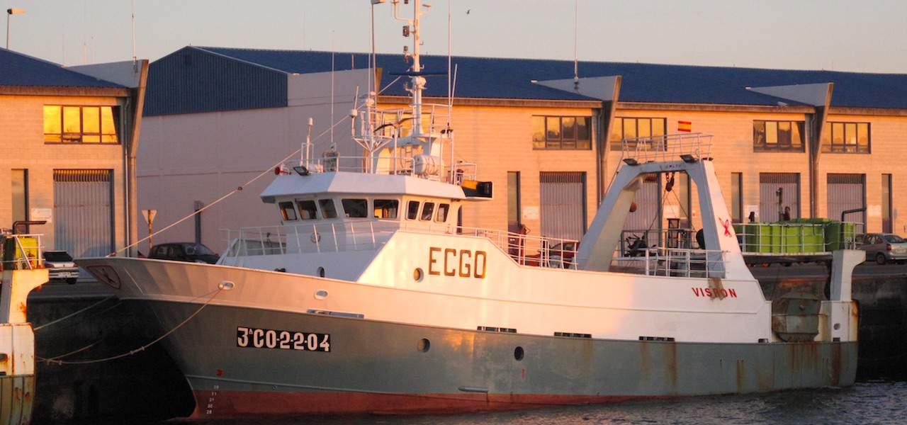 Spain's fishing sector requests authorisation to source COVID-19 testing