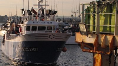 Supporting European fishing through the crisis