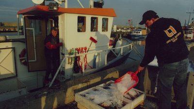 Baltic demersal fishermen dealt huge blow by EU