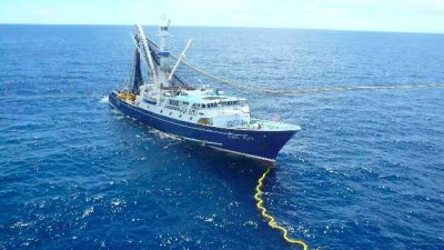 Le Drezen enters Pacific tuna fisheries