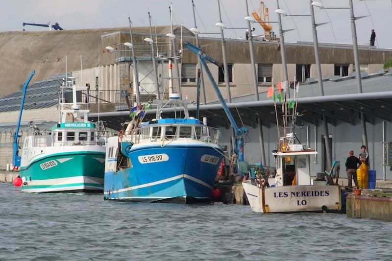 New president for top French fishing port
