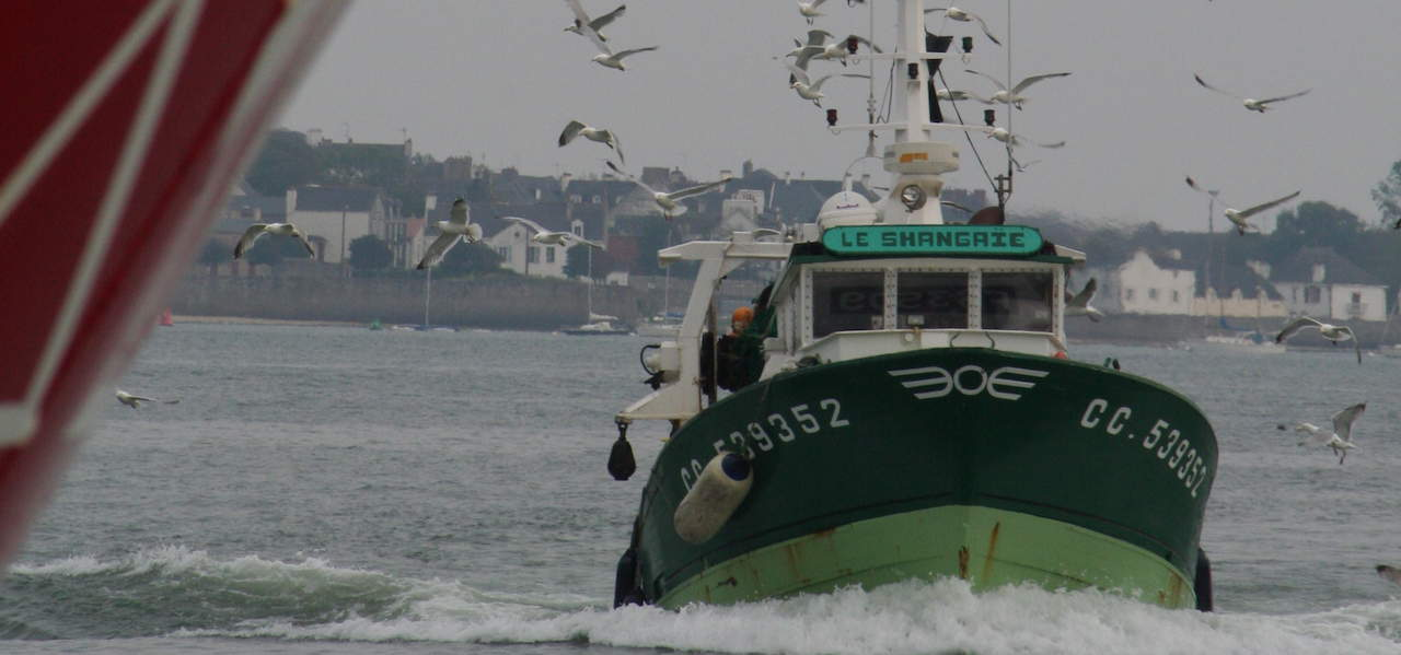 EU fishing industry calls for urgent measures to secure fish supply