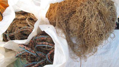 Winners all round on waste fishing gear