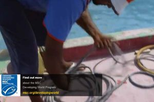MSC launches new film to engage developing world fisheries.  Photo: MSC - @ Fiskerforum