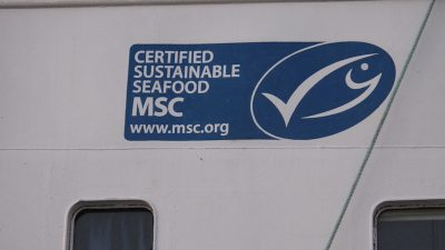 MSC hits back at On the Hook campaign