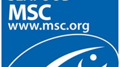 Norwegian saithe fisheries earn MSC recertification