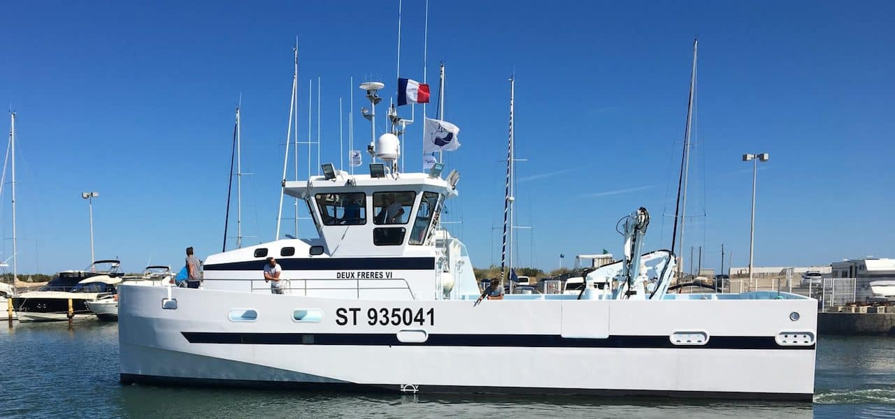 Unique Mediterranean catamaran longliner/seiner